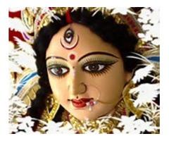 +919878377317{{**world famous tantrik **}}vishawnath ji